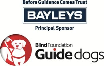 Bayleys Great Guide Dog Online Auction